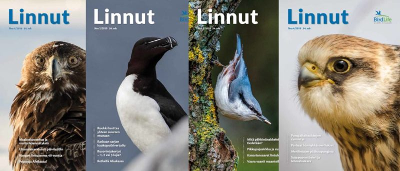 Linnut-lehdet 2019
