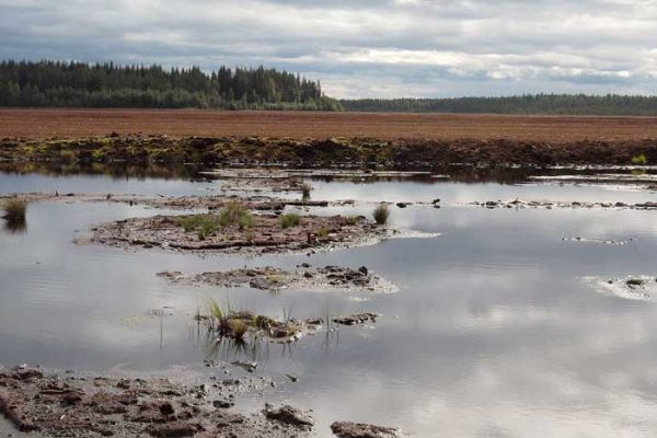 Turvetuotantoalue, kuva: Teemu Lehtiniemi.