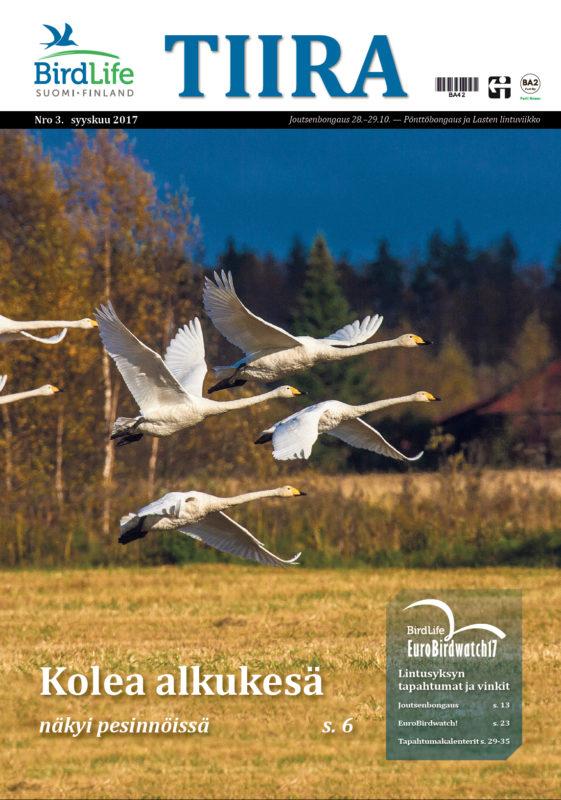 Birdlife Suomi | BirdLife-lehti