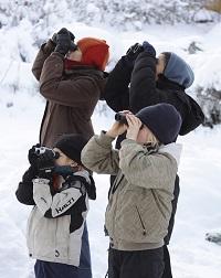 Pihabongaajat. Kuva: Mikko Pärssinen