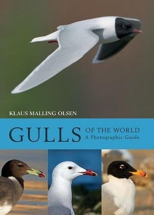Gulls-of-the-World