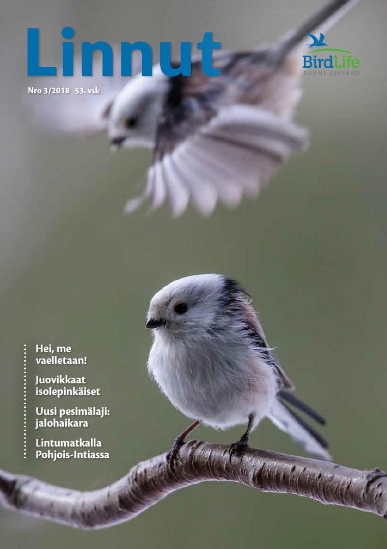 Linnut 3/2018