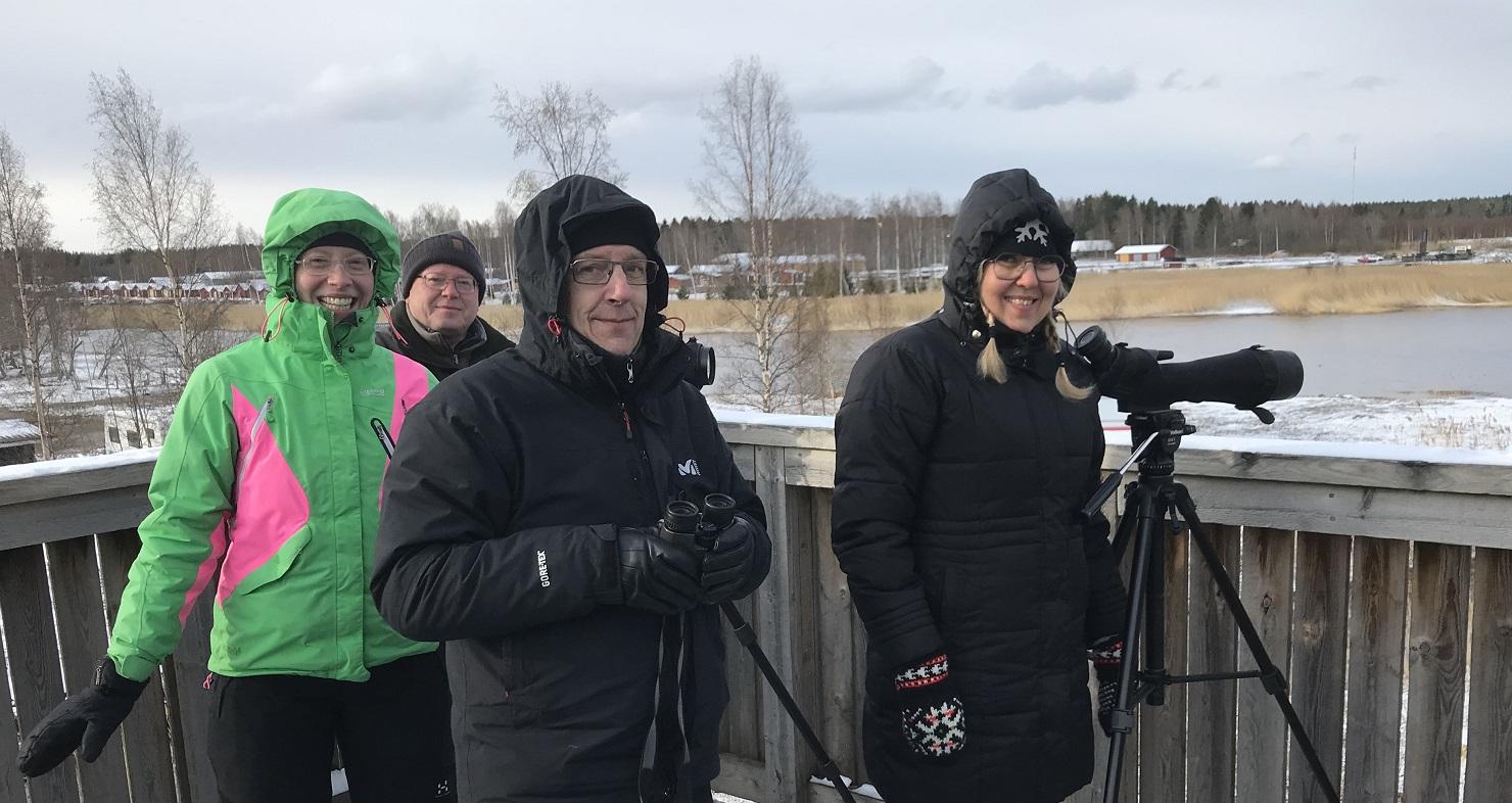 Tornien taisto 2019, Maalahti. Kuva: Camilla HambergKuva