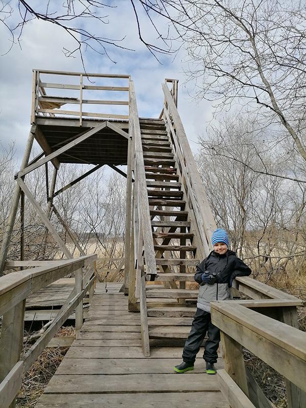 Lapsi seisoo lintutornin edessä. Kuva: Jenni Huopanen.