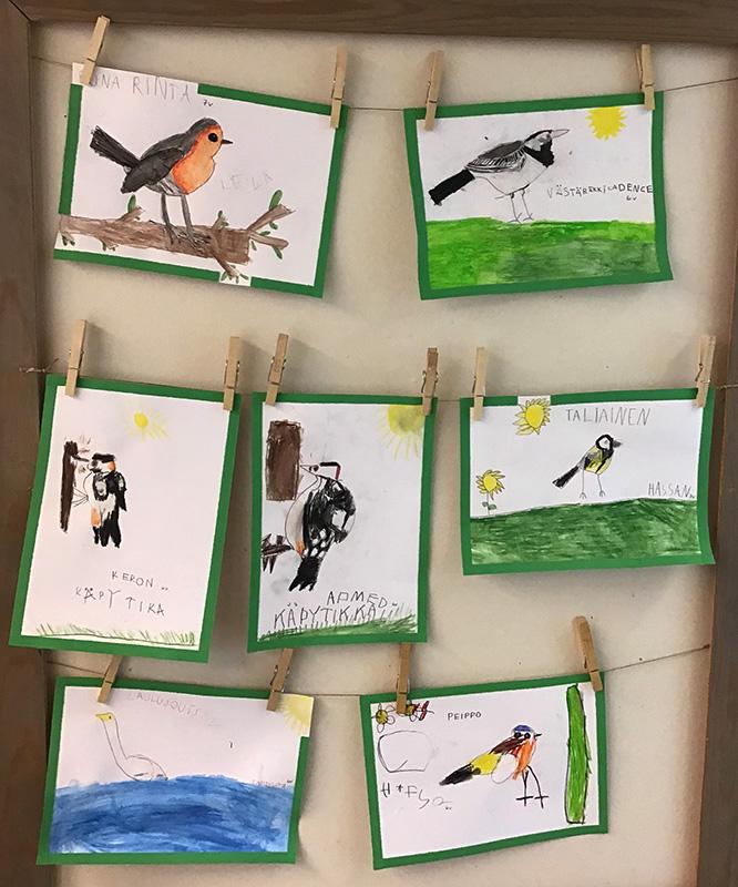 Lasten lintupiirustuksia. Kuva: Maija Laine.