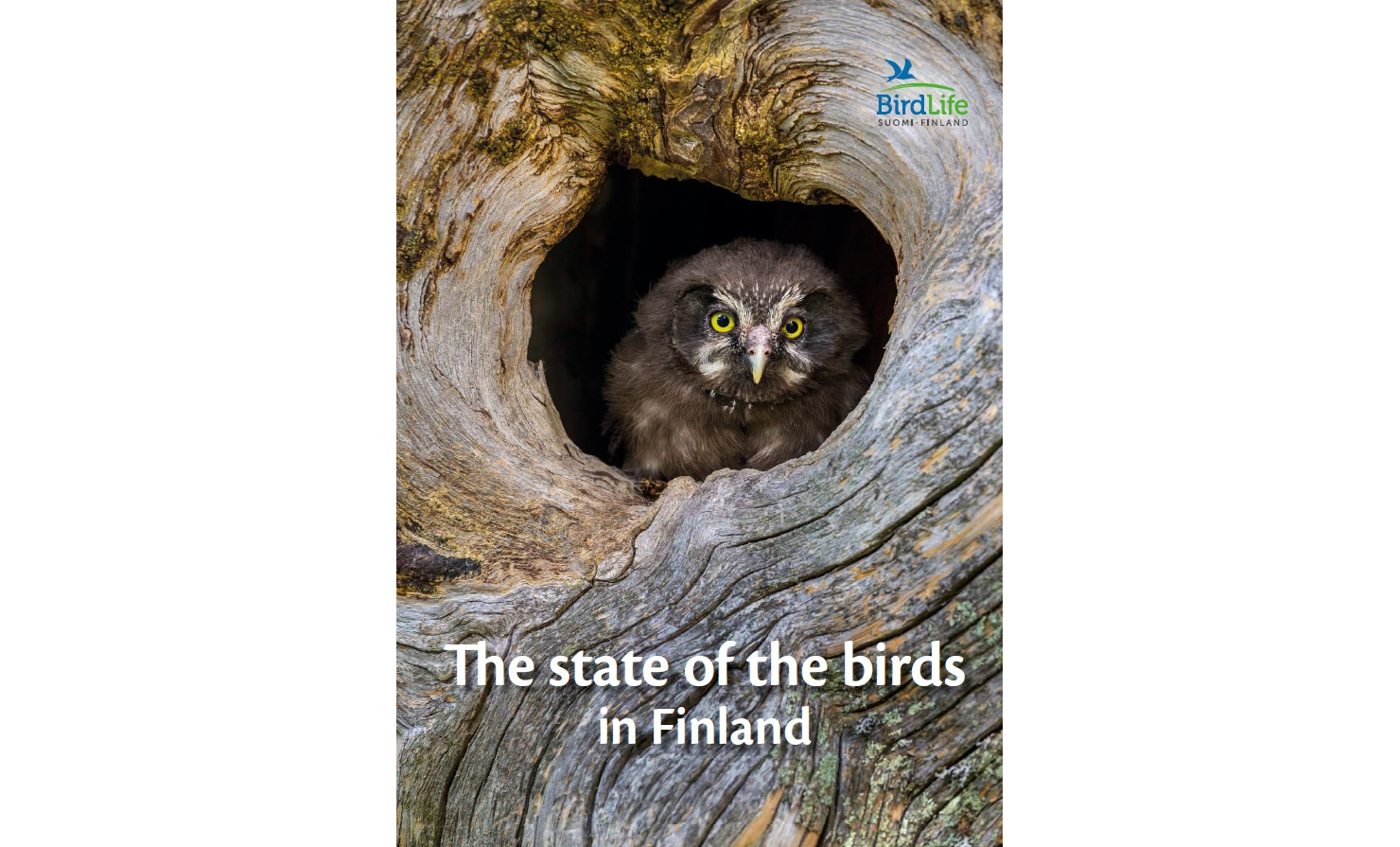 The state of the birds in Finland