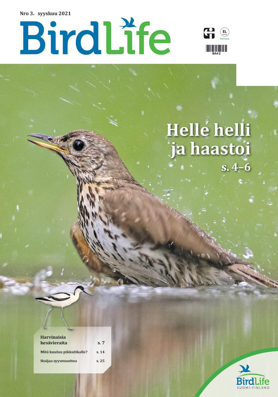 BirdLife_3_2021_kansi