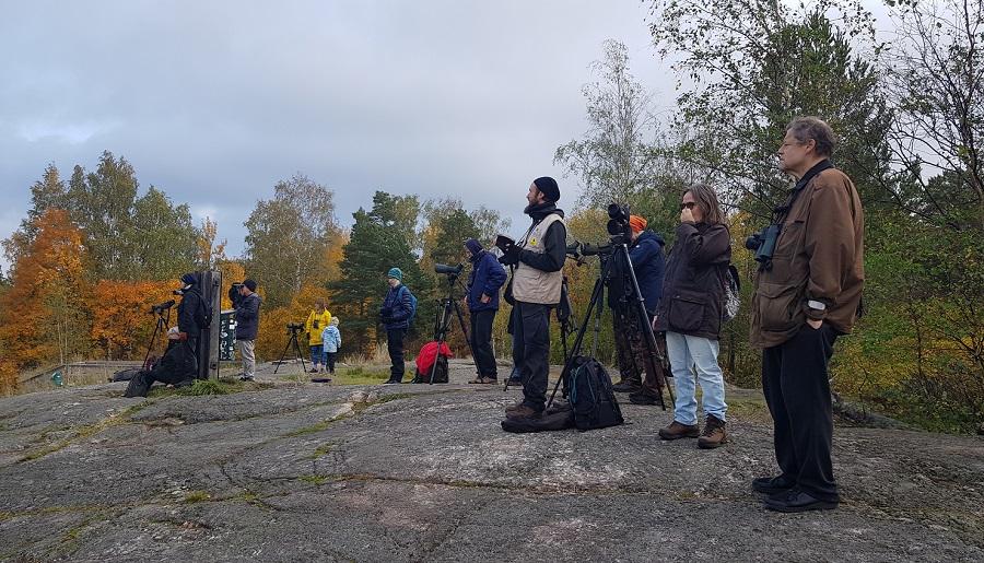 EuroBirdwatch-tapahtuma 2.10.2021, Helsinki, Herttoniemi. Kuva: Aki Arkiomaa